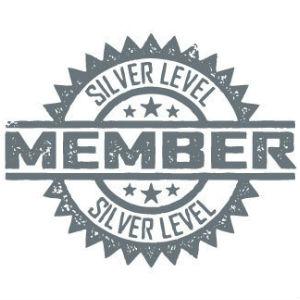 silver-300x300